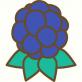 ahadns-icon